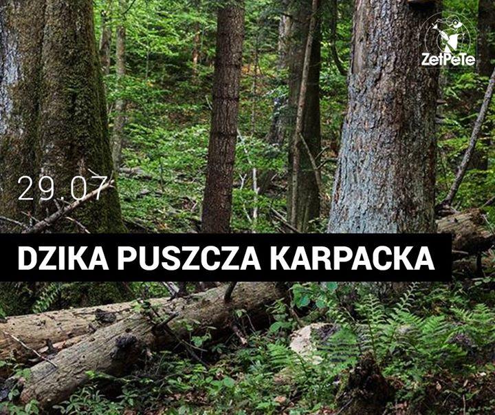 Photo of Jutro od 13:00 startuje event Dzika Pusz…