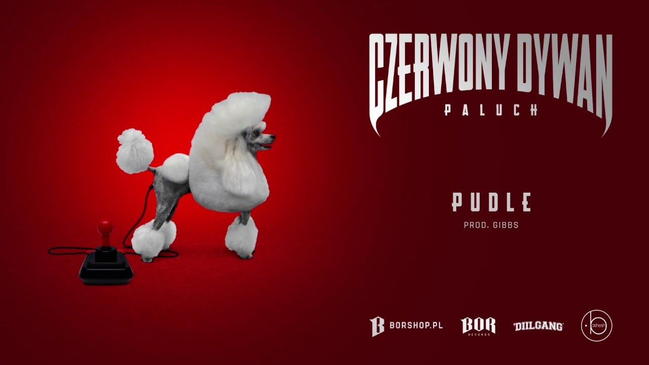 """Photo of Paluch – """"Pudle"""" prod. Gibbs (OFFICIAL AUDIO)"""