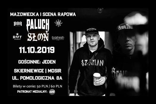 Photo of Paluch x Słoń x Jeden