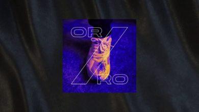 Photo of Sokół – Zorro