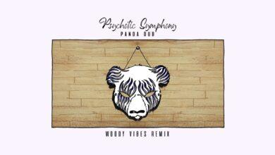 Photo of Panda Dub – Psychotic Symphony (Woody Vibes Remix)