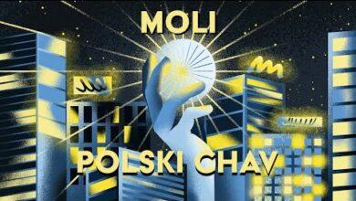 Photo of Moli – Polski Chav