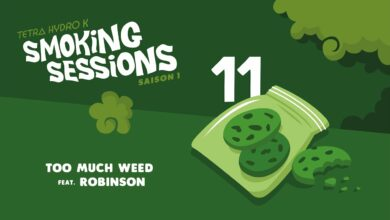 Photo of Tetra Hydro K ft. Robinson – Too Much Weed – Smoking Sessions #11
