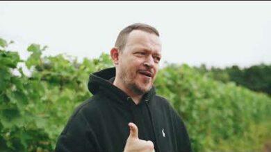 Photo of Winem Powiśle: Lis 2020 – premiera w Winnicy Dwórzno