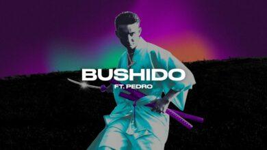 Photo of Janusz Walczuk ft. Pedro – Bushido