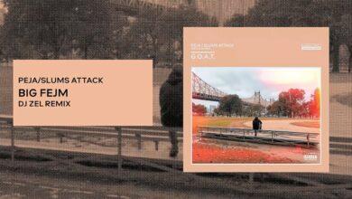 Photo of Peja/Slums Attack – Big Fejm (DJ. Zel remix)