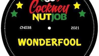 Photo of Wonderfool ★★ Free Download ★★